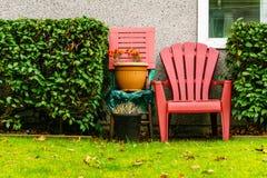 Escolha a cadeira vermelha do pátio no gramado e nos arbustos verdes frescos do quintal Imagem de Stock