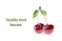 Escolha a cereja madura com gotas da água em um fundo branco Duas cerejas Isolado Fundo do alimento imagem de stock royalty free