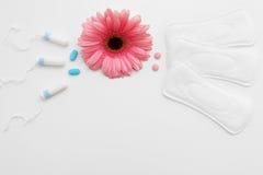 Escolha tampões ou almofadas, higiene fêmea e proteja-os Fotos de Stock
