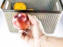 Escolhendo frutos frescos Imagem de Stock