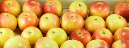 Escolhendo a maçã direita Imagens de Stock