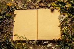 Esconda el libro abierto con las flores y las plantas naturales del prado del verano tardío alrededor Imagen de archivo