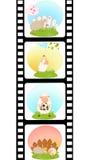Esconda la tira colorida de la película con las ovejas Foto de archivo