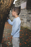 Esconder do menino foto de stock royalty free