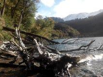 Escondido de Lago - la Argentina Fotos de archivo