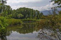 Escondrijo acogedor para la relajación del verano con el amigo cerca por el lago en parque del sur Imagen de archivo libre de regalías