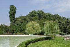 Escondrijo acogedor para la relajación del verano con el amigo cerca por el lago en parque del sur Imagenes de archivo