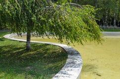 Escondrijo acogedor para la relajación del verano con el amigo cerca por el lago en parque del sur Fotos de archivo libres de regalías