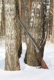 Escopeta vieja cerca del árbol de abedul en bosque del invierno Fotos de archivo