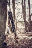 Escopetas de la caza con la correa de la munición en bosque después de la caza Fotografía de archivo libre de regalías