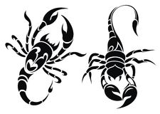 Escorpião ilustração stock