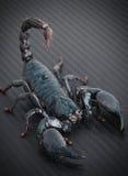 Escorpião Imagem de Stock Royalty Free