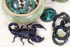 Escorpião do imperador com ornamentação das mulheres imagens de stock royalty free