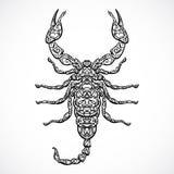 Escorpión adornado Muestra blanco y negro del zodiaco del vintage Vector dibujado mano del vector ilustración del vector
