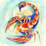 Escorpión de la muestra del zodiaco