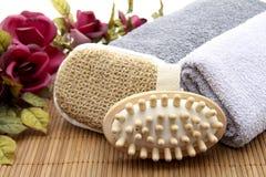 Escova com esponja Fotos de Stock