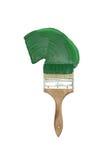 Escova com pintura verde-clara Fotos de Stock