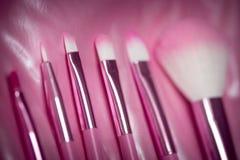 Escova cosmética profissional cor-de-rosa Imagens de Stock