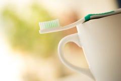 Escova de dentes ajustada para cuidados dentários fotografia de stock