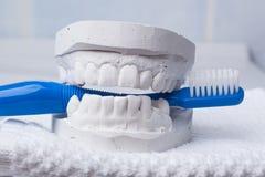 Escova de dentes azul com gipsita dental imagens de stock