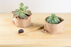 Escova de dentes de bambu com dentífrico do carvão vegetal imagem de stock