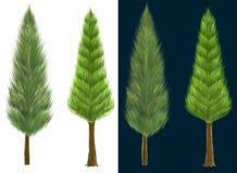 Escova de pintura do gráfico de computador da técnica de projeto do pinheiro 2 Fotos de Stock