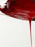Escova de pintura vermelha Imagens de Stock