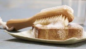 Escova do sabão Fotografia de Stock