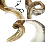Escova e tesouras de cabelo no cabelo do destaque Foto de Stock