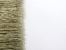Escova isolada no branco Imagem de Stock