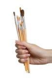 Escova para tirar Imagens de Stock