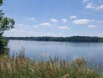 Escova pelo lago Imagem de Stock