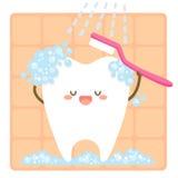 Escovadela de dente Fotos de Stock