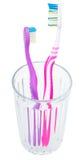 Escovas de dentes do adulto e das crianças no vidro imagem de stock royalty free
