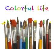 Escovas de pintura com pintura da cor Fotografia de Stock