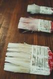 Escovas de pintura da árvore imagens de stock