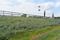 Escovas de pintura indianas dos Bluebonnets e nossas bandeiras em Texas sul imagens de stock royalty free