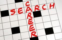 Escreva a busca da carreira das palavras em um enigma imagem de stock royalty free