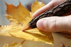 Escrevendo uma letra? Imagens de Stock