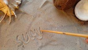 Escribe el verano de la palabra, en la arena de la playa con una concha marina y un coco almacen de metraje de vídeo