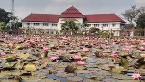 Escritório de cidade de Malang imagem de stock royalty free