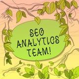 Escrita conceptual da mão que mostra Seo Analytics Team Exibição apresentando da foto do negócio que faz o processo que afeta a v ilustração royalty free