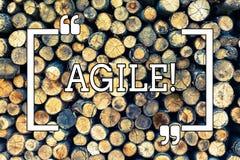 Escrita do texto da escrita ágil O significado do conceito desenvolve uma agilidade para o fundo de madeira da mudança tecnológic ilustração royalty free