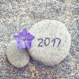 2017 escrito em uma pedra com a flor azul da pervinca Fotos de Stock