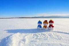 2019 escrito na neve O boneco de neve de sorriso com chapéus e os lenços estão estando no campo com neve Paisagem com montanhas imagens de stock royalty free