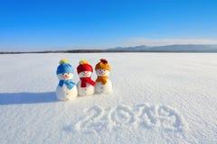2019 escrito na neve O boneco de neve de sorriso com chapéus e os lenços estão estando no campo com neve Paisagem com montanhas fotografia de stock