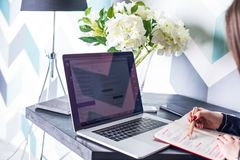 Escritor profesional de sexo femenino del contenido del negocio que usa el red-libro imagen de archivo