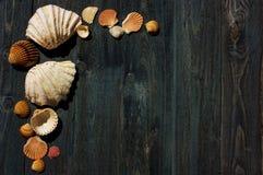 Escritorio de madera con las cáscaras del mar imagenes de archivo
