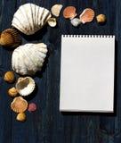 Escritorio de madera con las cáscaras del mar y la libreta blanca Fotografía de archivo