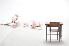 Escritorio y flores de cerezo del estudio Imágenes de archivo libres de regalías